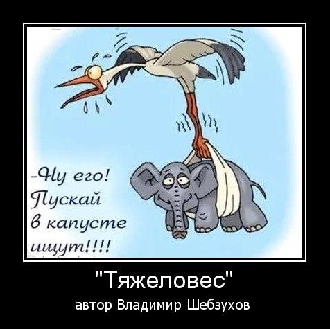 https://www.litprichal.ru/upload/110/cdbcc76d79b80cb966ee254f2484c404.jpg