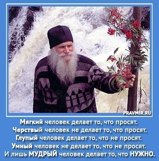 Афоризм 089. О мудрости.