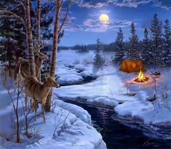 Синь небес на снегу и горит костерок...
