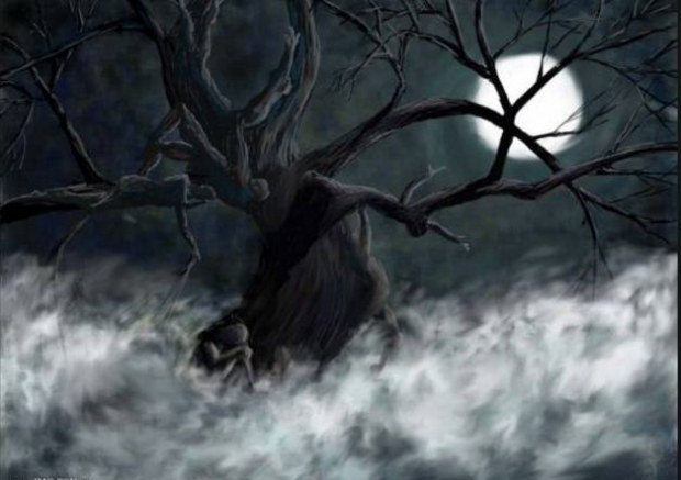 Гроздьями души висят на ветвях