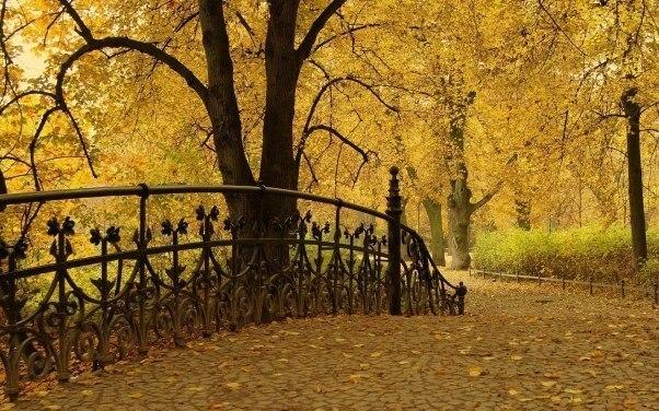 Про жизнь и осень