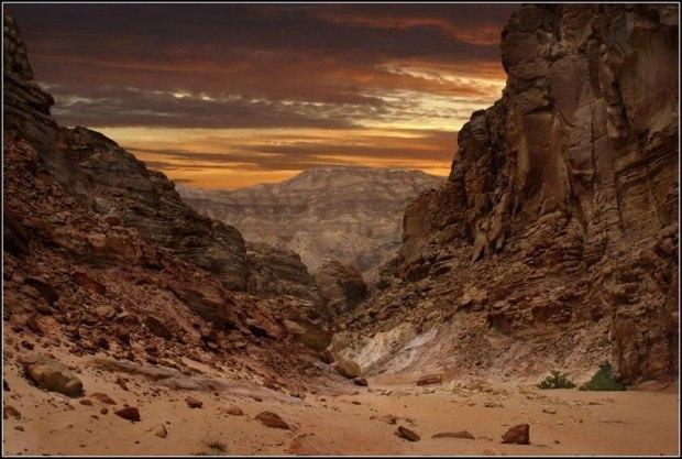 Синайская пустыня. Создание Бога.