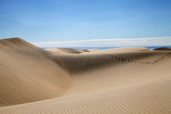 Пустеля без лабіринтів