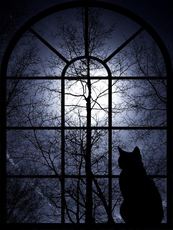 В Темноте Дом Ветров