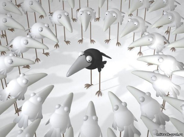 Афоризм 723. О белых воронах.