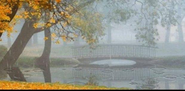 Настала осень -  цвет распада