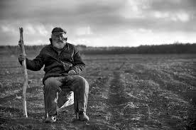 Старик и поле