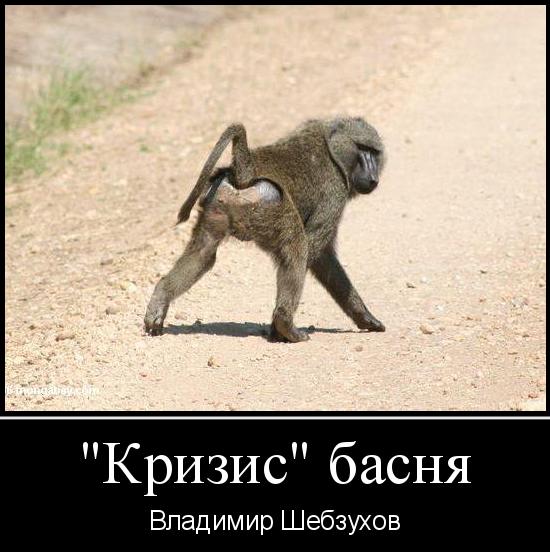 """В.Шебзухов  """"КРИЗИС"""" читает актриса театра и кино Анжелика Огиря"""