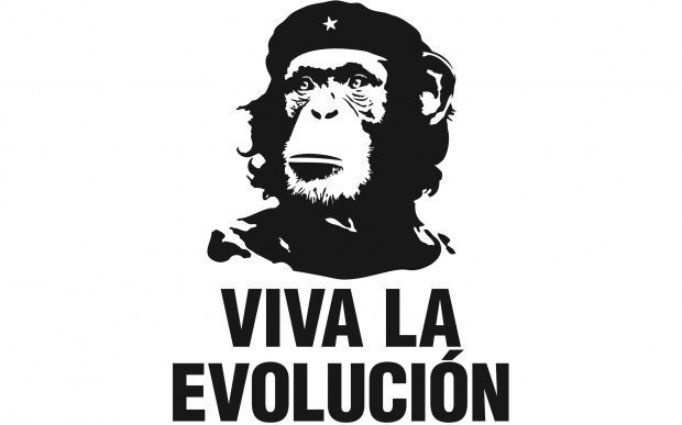 Афоризм 111. Об эволюции