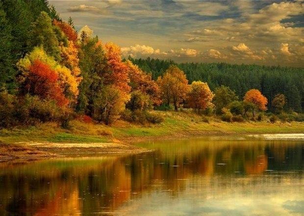 Осень в двери стучит листопадом.
