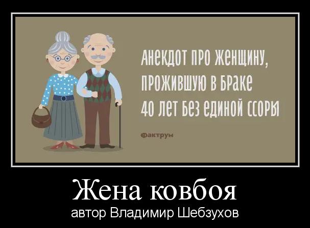 «Жена ковбоя» (Владимир Шебзухов)