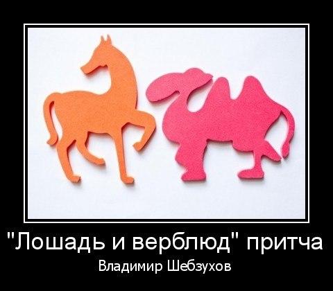 Лошадь и верблюд (Владимир Шебзухов) Читает: Мира Максименко