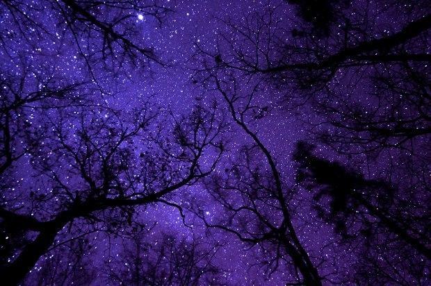 мысли к небу прикасаются