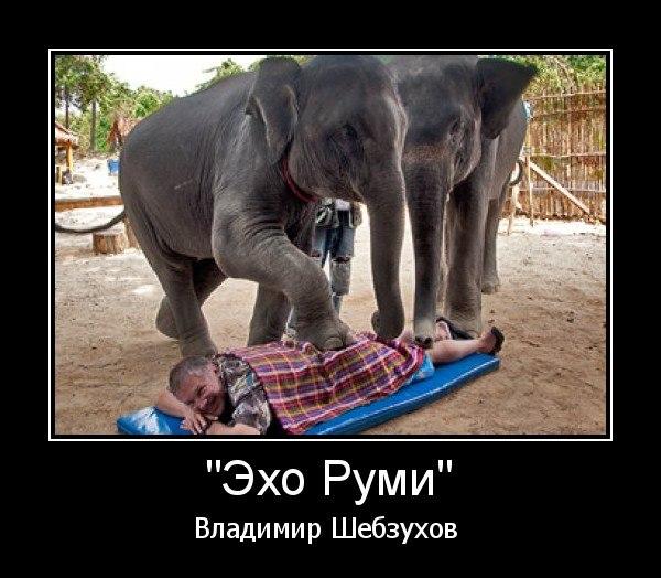 https://www.litprichal.ru/upload/803/de1a44f762c82606220536f9415e63d8.jpg