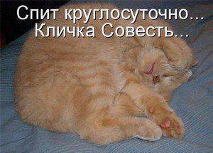 http://www.litprichal.ru/upload/846/0fd3c327d594dddedef0b7c228c9ecc8.jpg