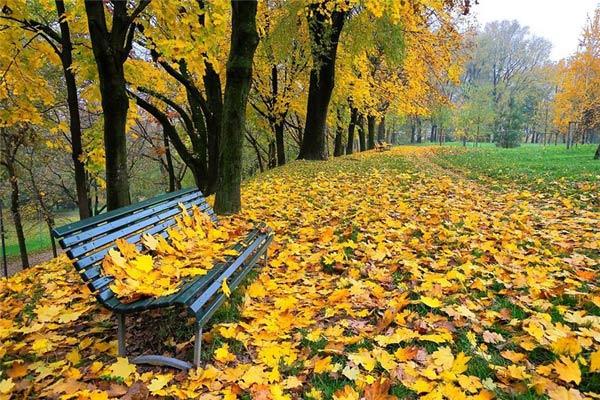 Золото листвы осенней - музыка Эдема Фетиева, исполняет Олег Корчагин