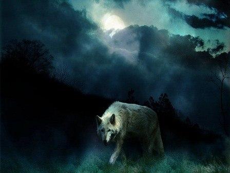 Волчья расправа