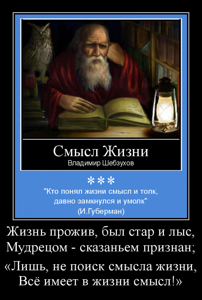 «Смысл жизни» (Владимир Шебзухов)