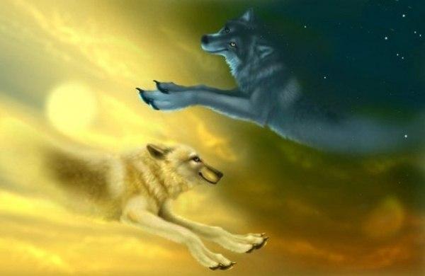 Два пса.