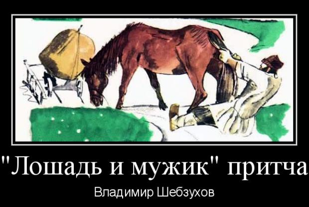 «Лошадь и мужик» (Владимир Шебзухов)